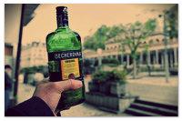 Как правильно пить Бехеровку: рецепт и лечебные свойства напитка.