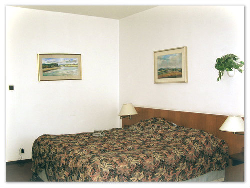 Размещение в отеле Прокоп — прекрасный способ сэкономить в Чехии.