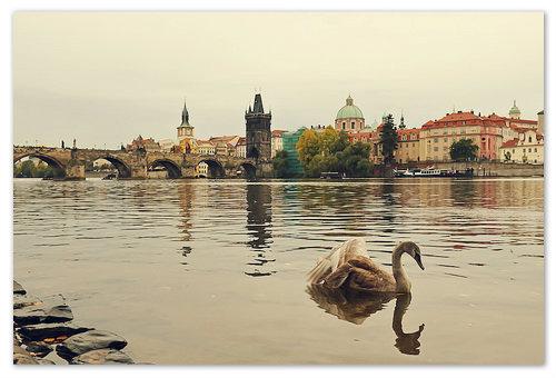 Прага и Чехия в октябре 2017: погода, туры, отдых, отзывы туристов. Что посмотреть в Праге в октябре