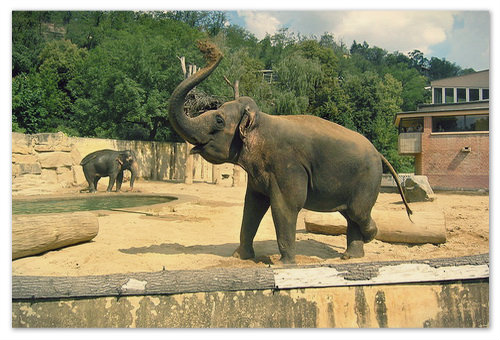 Zoo Praha.