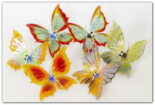 Стеклянные бабочки.