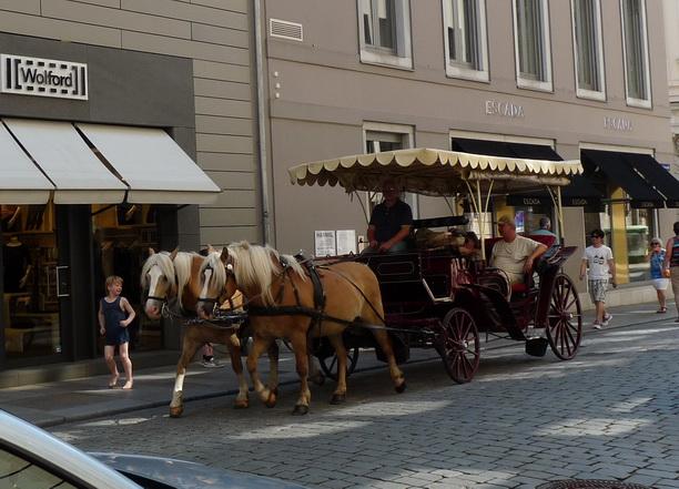 Туристов катают на красивых лошадках.