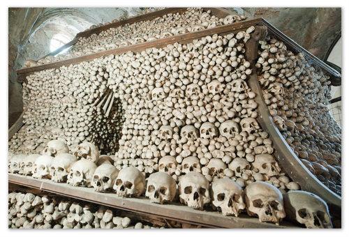 Сорок тысяч человеческих скелетов.