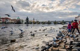 Чехия и Прага в декабре 2017 — готовимся к поездке