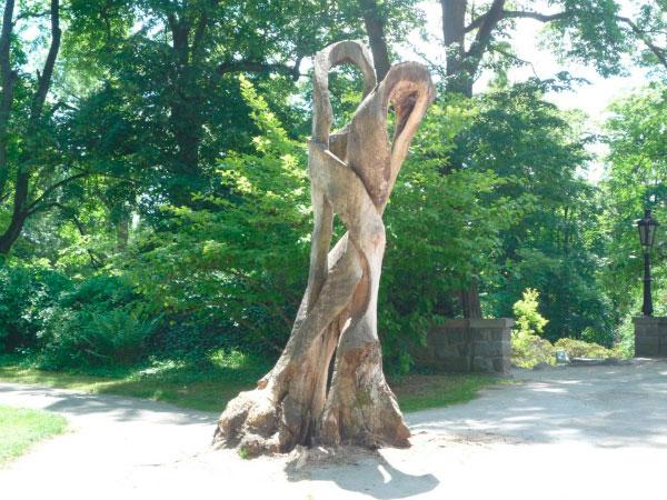 Дерево причудливой формы.