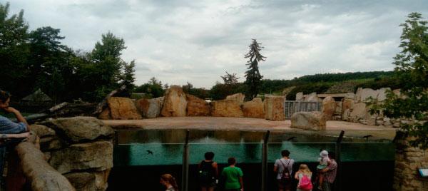 Городской зоопарк.