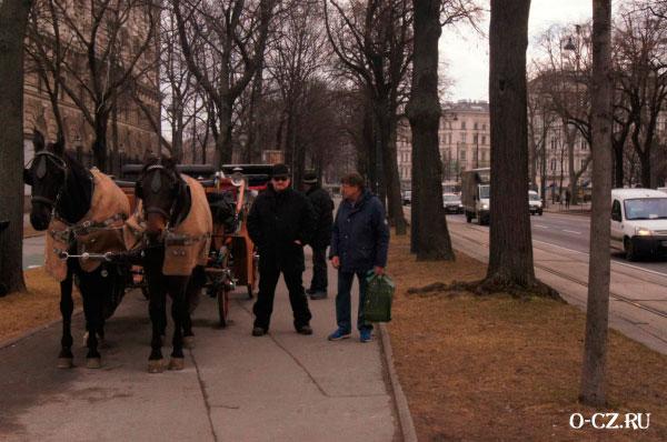 Повозка с лошадьми.